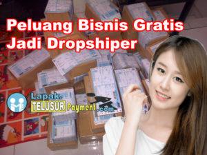 Bisnis Gratis Jadi Dropship Lapak online Telusur