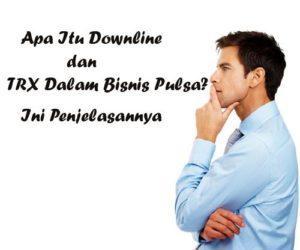 Apa Itu Downline dan TRX Dalam Bisnis Pulsa? Ini Penjelasannya